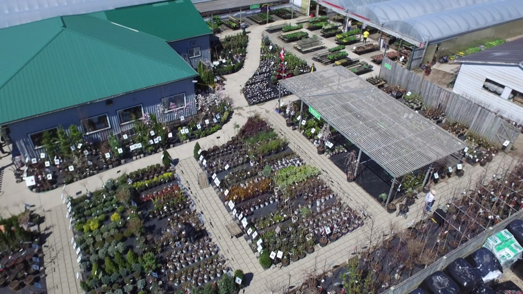 Van Luyk Greenhouses and Garden Centre Aerial Nursery Image